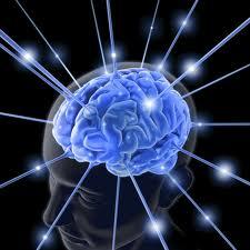 chronic pain brain